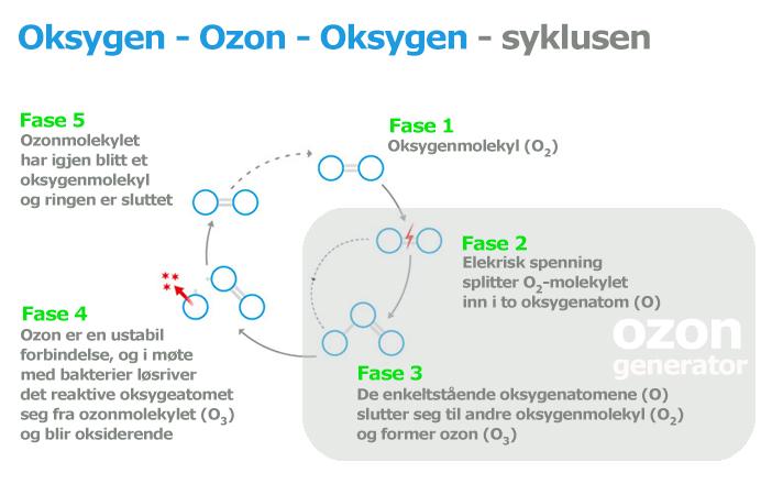 ozon oksygen syklus